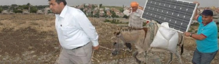 Donkey Power! – Solar Power Meets Donkeys In Turkey