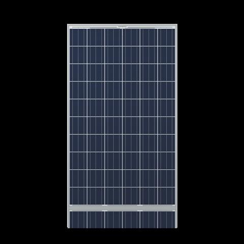 ReneSola 260W Virtus II
